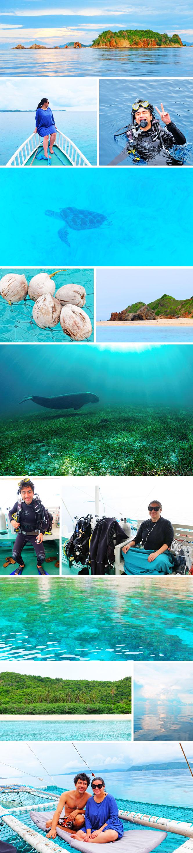 babymoon-dugong