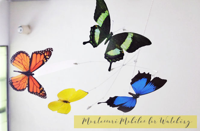Pablo-MontessoriButterfly